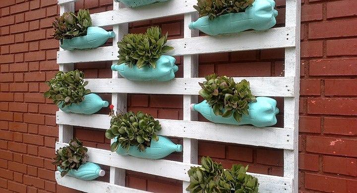 C mo tener un jard n vertical en casa jardinedia - Jardin vertical en casa ...